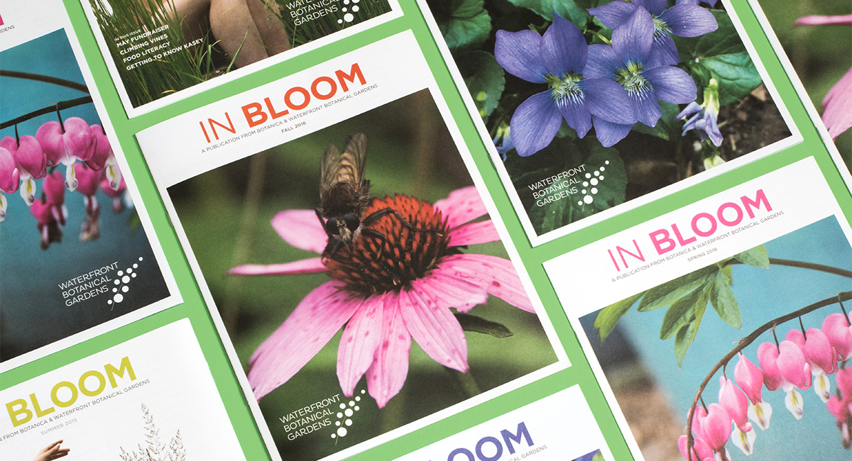 In Bloom magazines